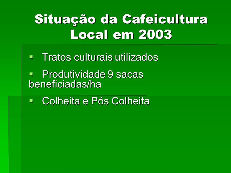 Situação da Cafeicultura Local em 2003 Tratos culturais utilizados Tratos culturais utilizados Produtividade 9 sacas beneficiadas/ha Produtividade 9 s