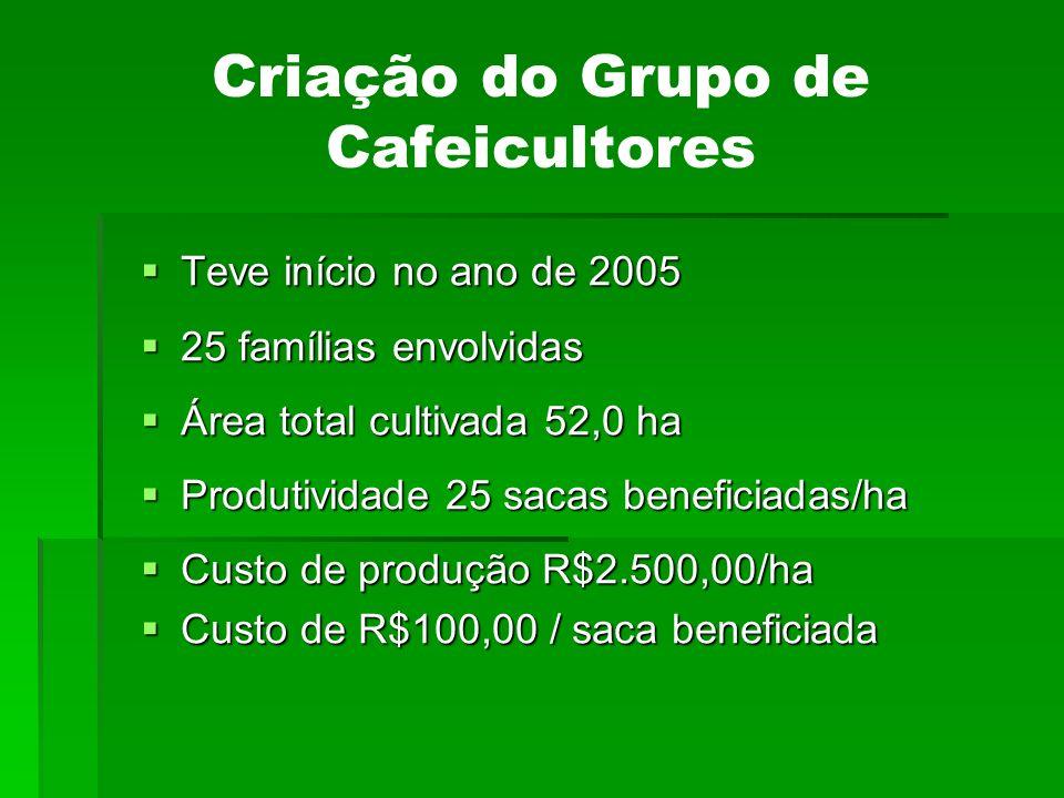 Criação do Grupo de Cafeicultores Teve início no ano de 2005 Teve início no ano de 2005 25 famílias envolvidas 25 famílias envolvidas Área total culti