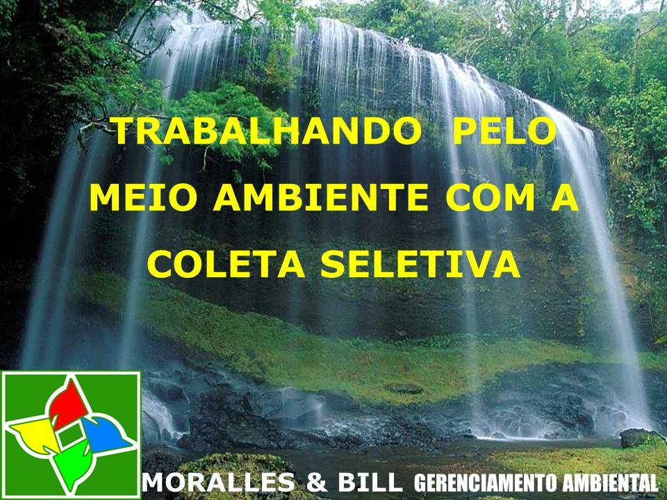 TRABALHANDO PELO MEIO AMBIENTE COM A COLETA SELETIVA MORALLES & BILL GERENCIAMENTO AMBIENTAL