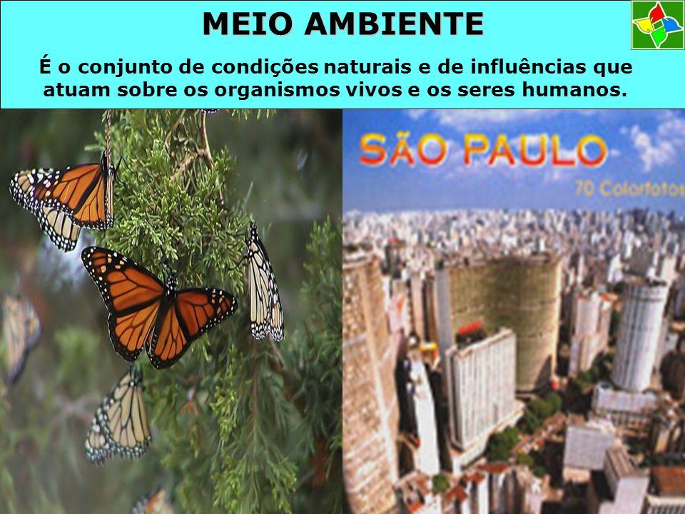 MEIO AMBIENTE É o conjunto de condições naturais e de influências que atuam sobre os organismos vivos e os seres humanos.