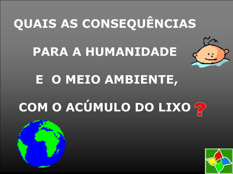 QUAIS AS CONSEQUÊNCIAS PARA A HUMANIDADE E O MEIO AMBIENTE, COM O ACÚMULO DO LIXO