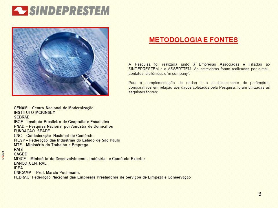 3 METODOLOGIA E FONTES CENAM – Centro Nacional de Modernização INSTITUTO MCKINSEY SEBRAE IBGE – Instituto Brasileiro de Geografia e Estatística PNAD –