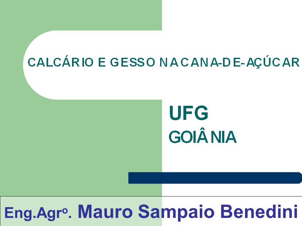 Eng.Agr o. Mauro Sampaio Benedini