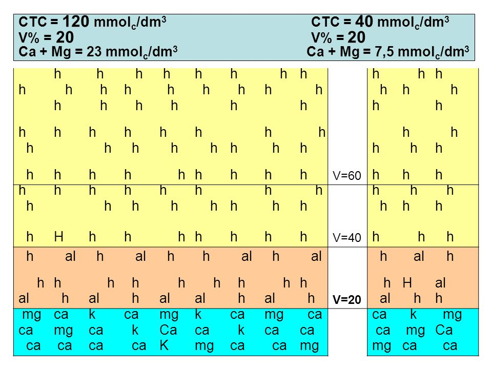 CTC = 120 mmol c /dm 3 CTC = 40 mmol c /dm 3 V% = 20 V% = 20 Ca + Mg = 23 mmol c /dm 3 Ca + Mg = 7,5 mmol c /dm 3 h h h hhh hhh hh h h hh h h hh h hh