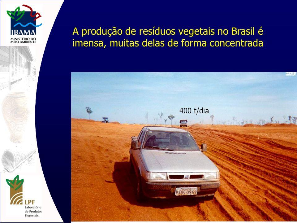 Tipos de Biomassa no Brasil Bagaço de cana-de-açúcar (100.10 6 t) Resíduos de madeira (60.10 6 t) Madeira – lenha (90.10 6 t) Casca de arroz (10.10 6 t) Bambu Casca de Castanha de Caju (1.10 6 t) Casca de Castanha de Pará Coco da Bahia (0,5.10 6 t) Coco babaçu Dendê (palma) Lixo Urbano + podas Outros: Milho, fumo, sorgo, café, algodão, etc.