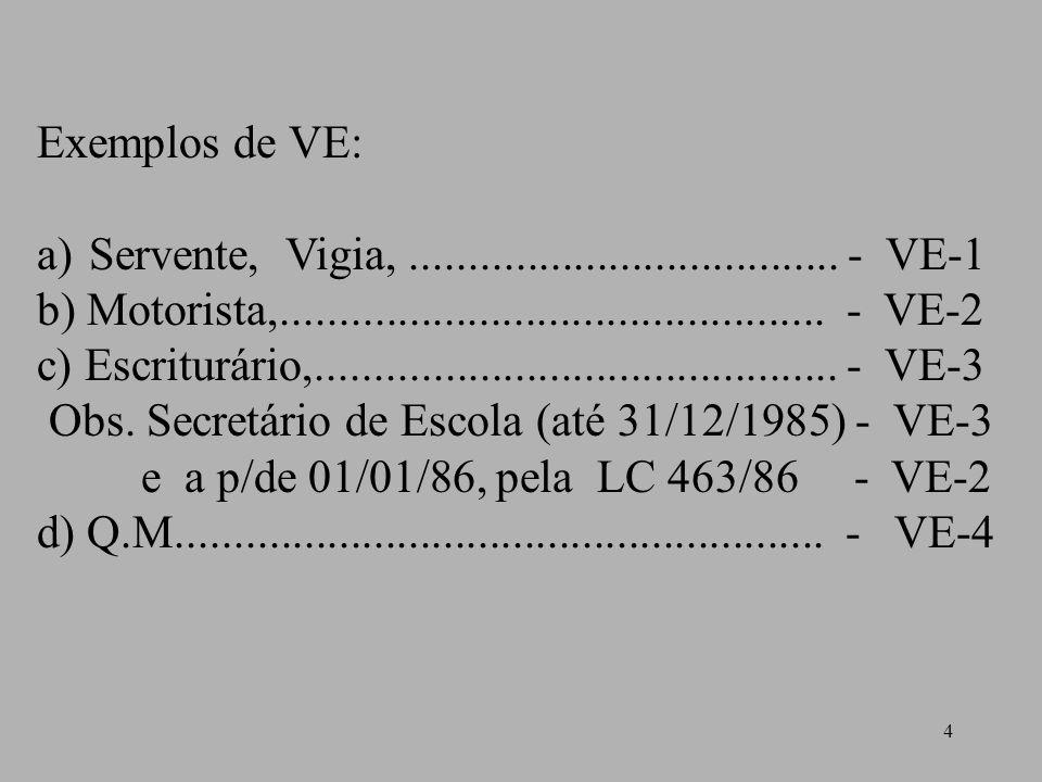 4 Exemplos de VE: a)Servente, Vigia,..................................... - VE-1 b) Motorista,............................................... - VE-2 c