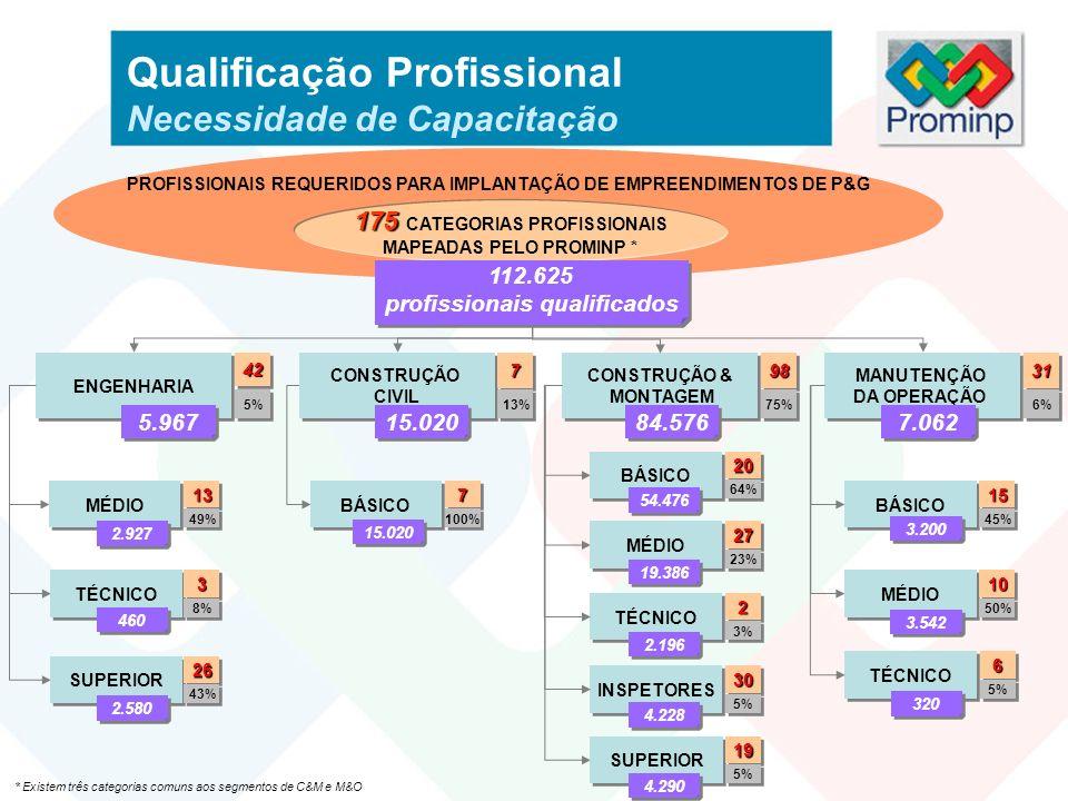 Qualificação Profissional Necessidade de Capacitação PROFISSIONAIS REQUERIDOS PARA IMPLANTAÇÃO DE EMPREENDIMENTOS DE P&G 175 175 CATEGORIAS PROFISSION
