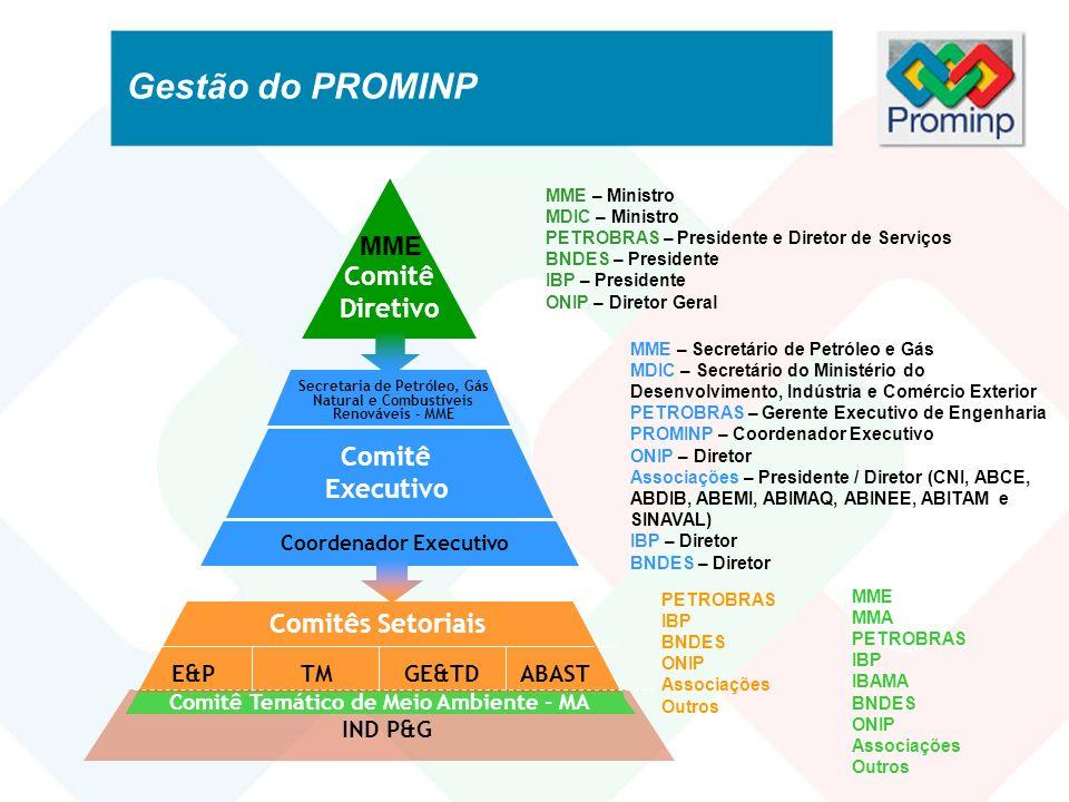 Gestão do PROMINP Comitê Diretivo Comitê Executivo Coordenador Executivo Secretaria de Petróleo, Gás Natural e Combustíveis Renováveis - MME MME MME –