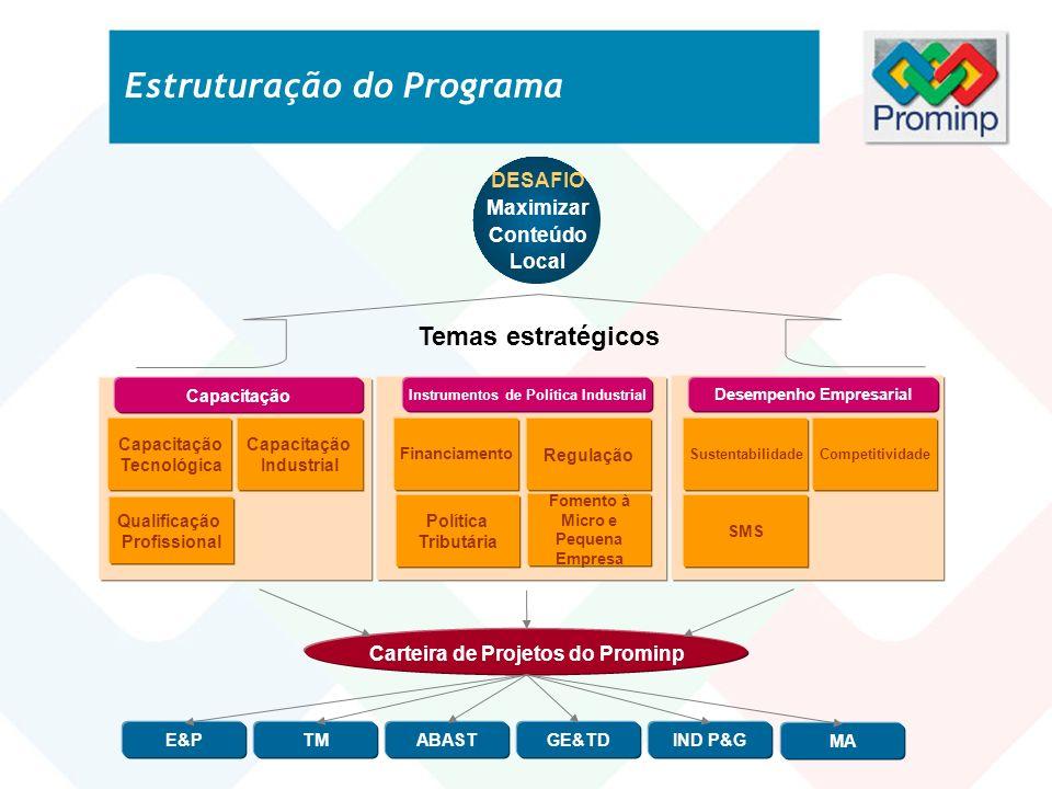 Temas estratégicos Carteira de Projetos do Prominp DESAFIO Maximizar Conteúdo Local SustentabilidadeCompetitividade SMS Desempenho Empresarial Polític
