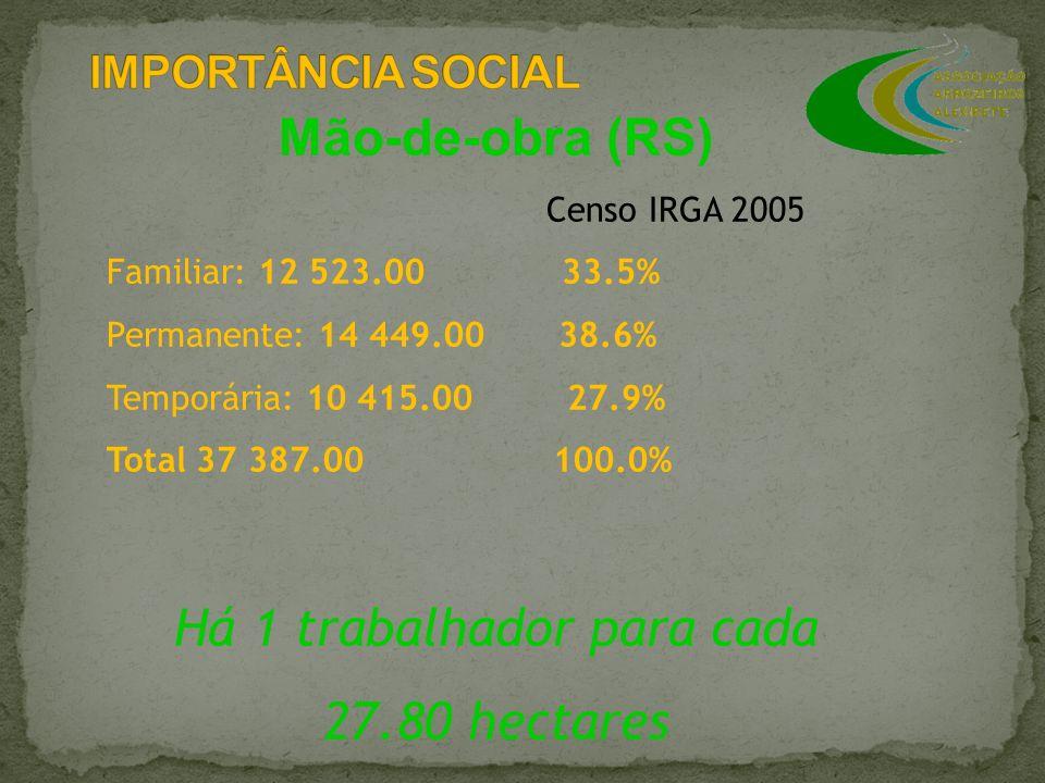 Mão-de-obra (RS) Censo IRGA 2005 Familiar: 12 523.00 33.5% Permanente: 14 449.00 38.6% Temporária: 10 415.00 27.9% Total 37 387.00 100.0% Há 1 trabalh