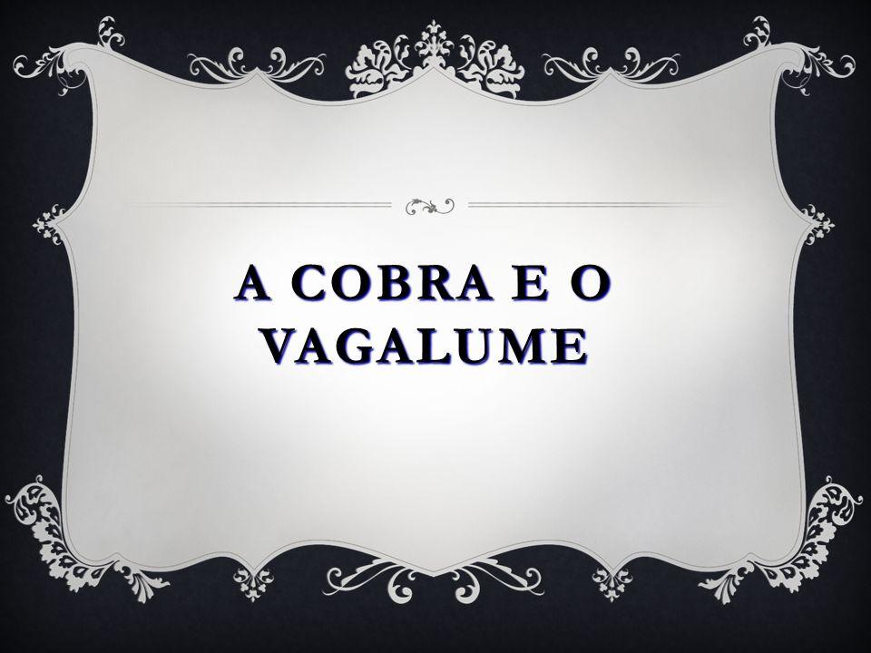 A COBRA E O VAGALUME