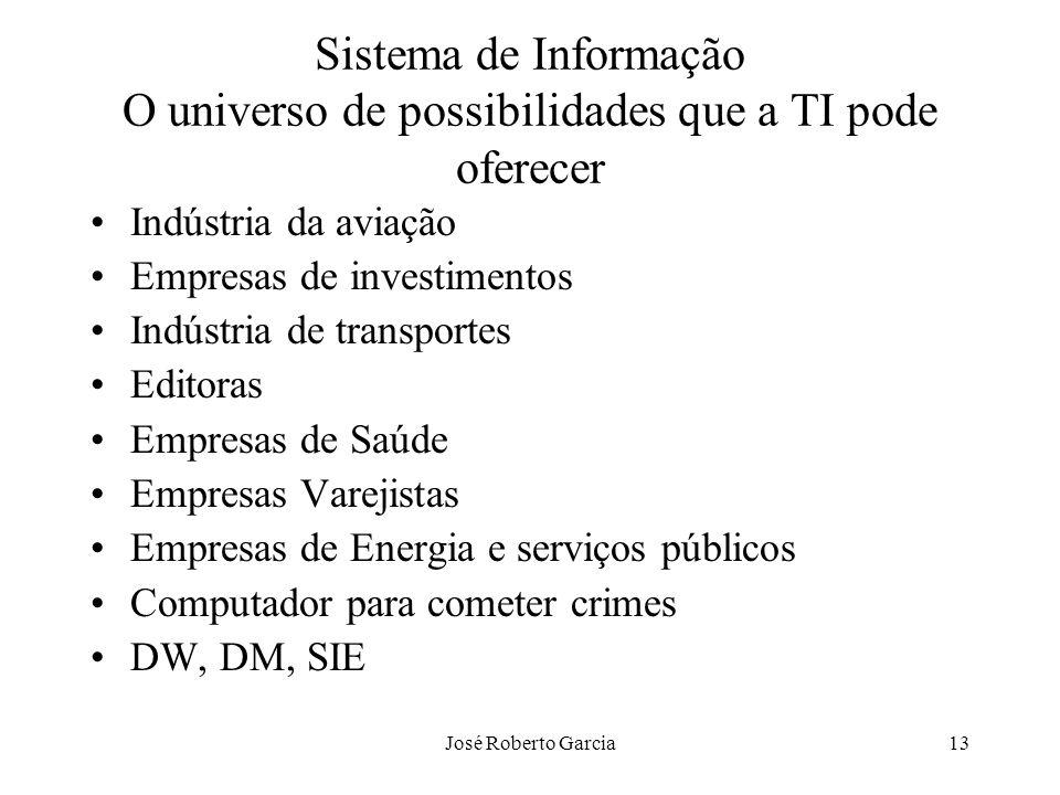 José Roberto Garcia13 Sistema de Informação O universo de possibilidades que a TI pode oferecer Indústria da aviação Empresas de investimentos Indústr