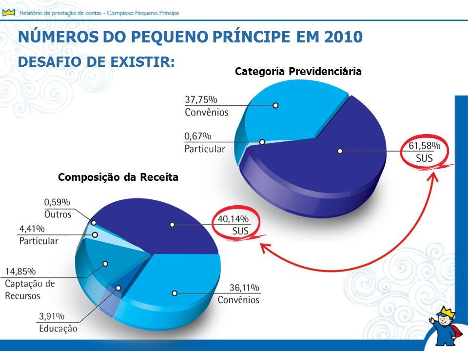 DESAFIO DE EXISTIR: Categoria Previdenciária Composição da Receita NÚMEROS DO PEQUENO PRÍNCIPE EM 2010