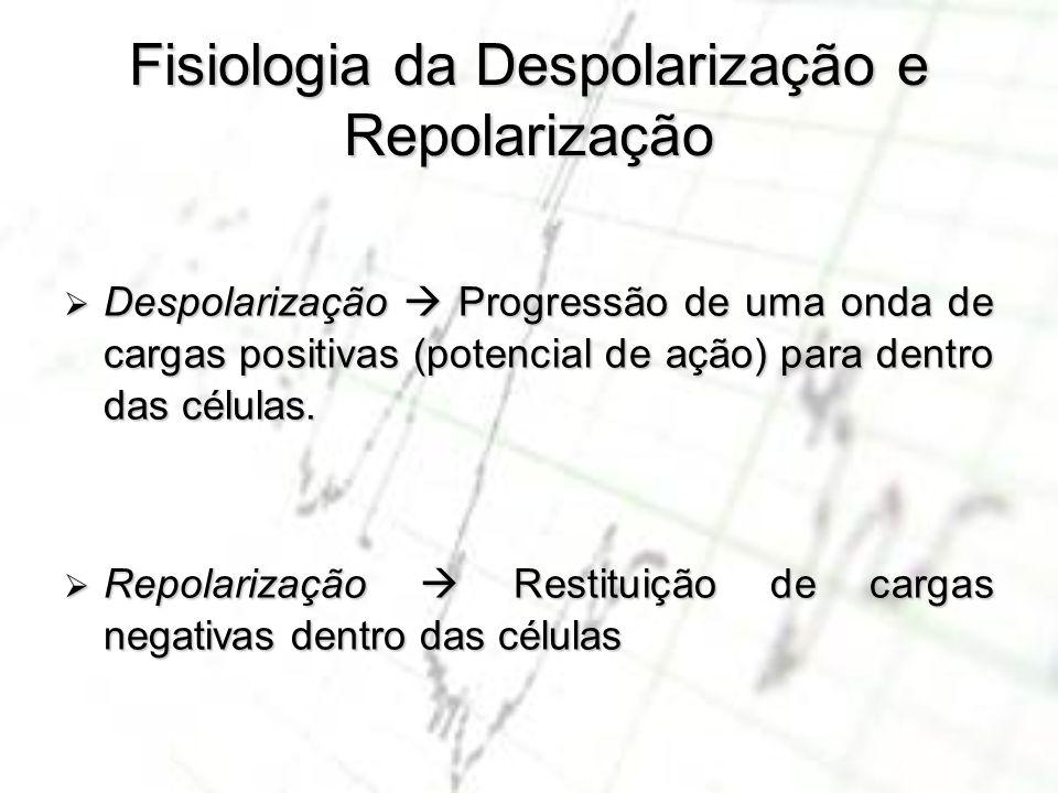 Fisiologia da Despolarização e Repolarização Despolarização Progressão de uma onda de cargas positivas (potencial de ação) para dentro das células. De