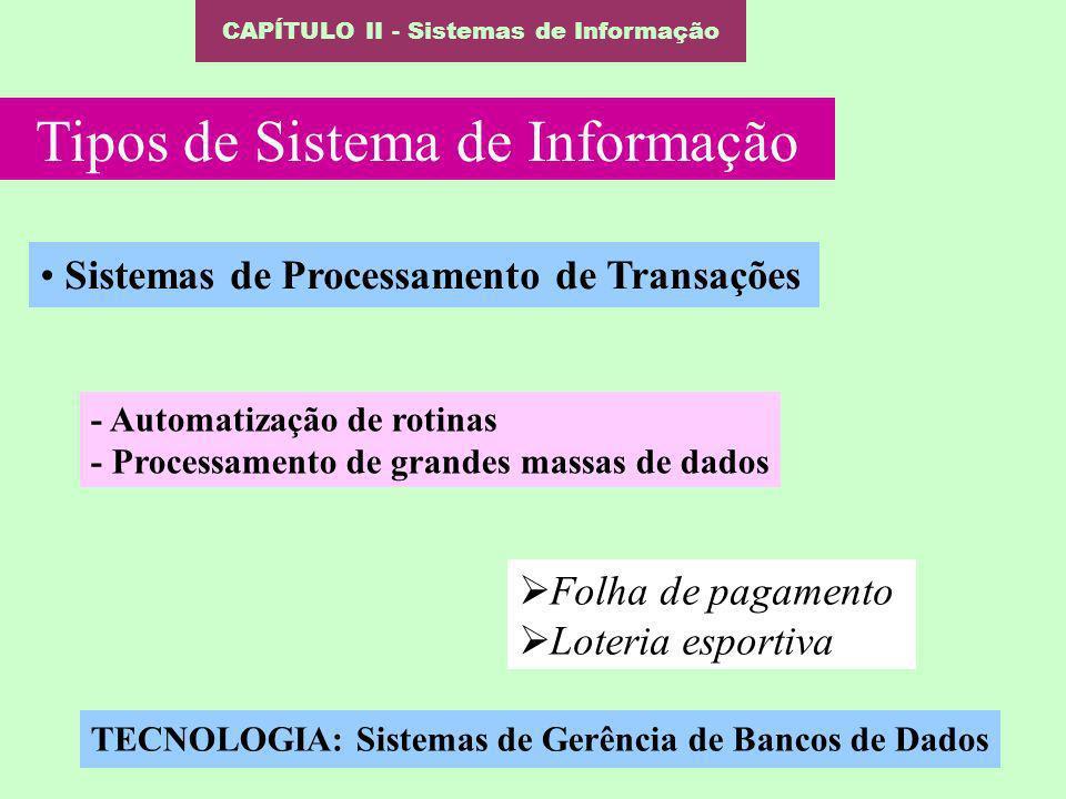 CAPÍTULO II - Sistemas de Informação Tipos de Sistema de Informação Sistemas de Processamento de Transações - Automatização de rotinas - Processamento