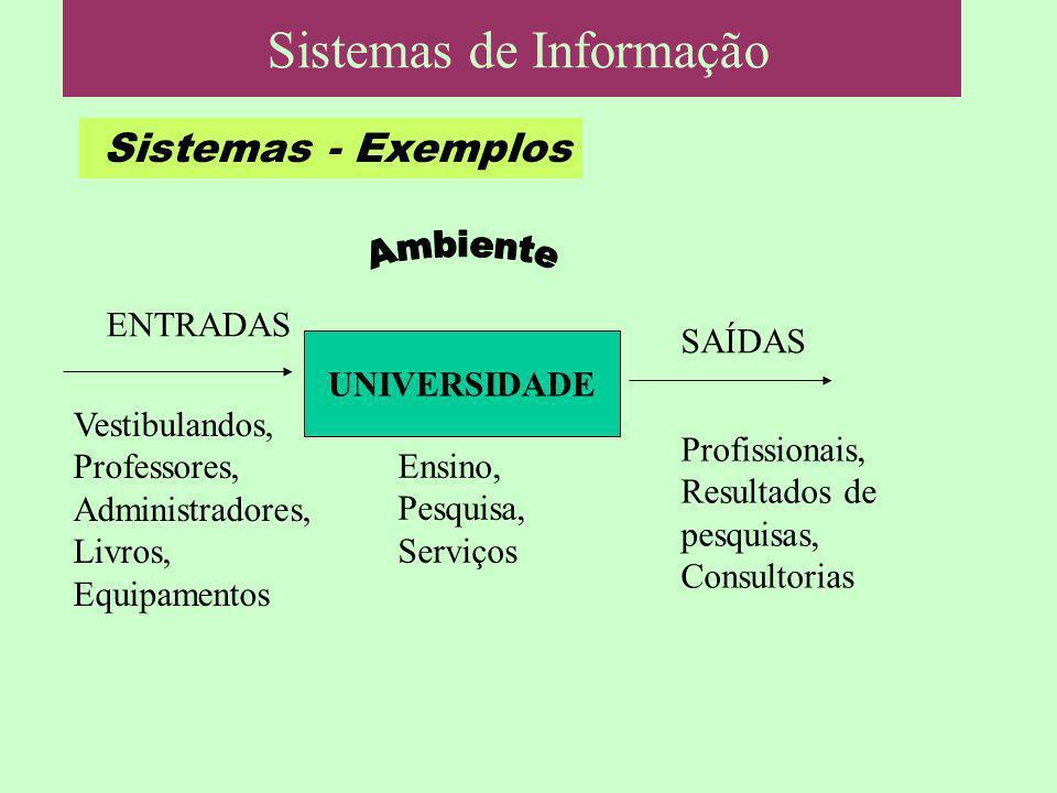 Sistemas - Exemplos FABRICA DE BICICLETAS Armações, Componentes, Operários SAÍDAS Sistemas de Informação Bicicletas Solda, Montagem, Marketing ENTRADAS