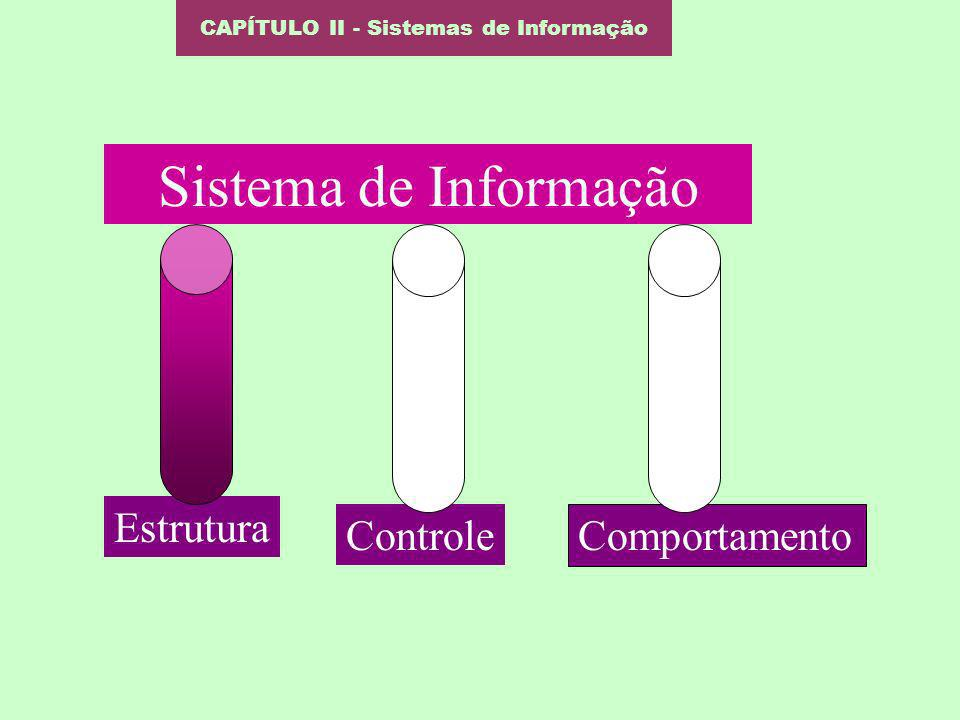 Sistema de Informação Estrutura Controle Comportamento