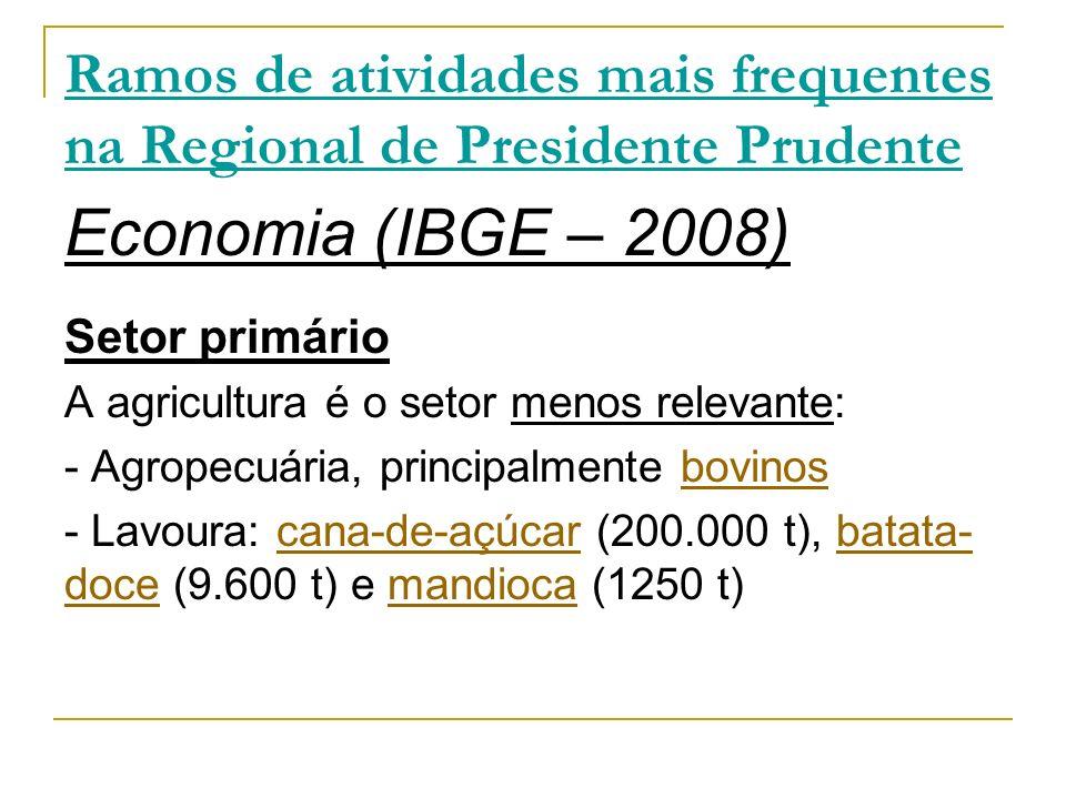 Economia (IBGE – 2008) Setor primário A agricultura é o setor menos relevante: - Agropecuária, principalmente bovinosbovinos - Lavoura: cana-de-açúcar