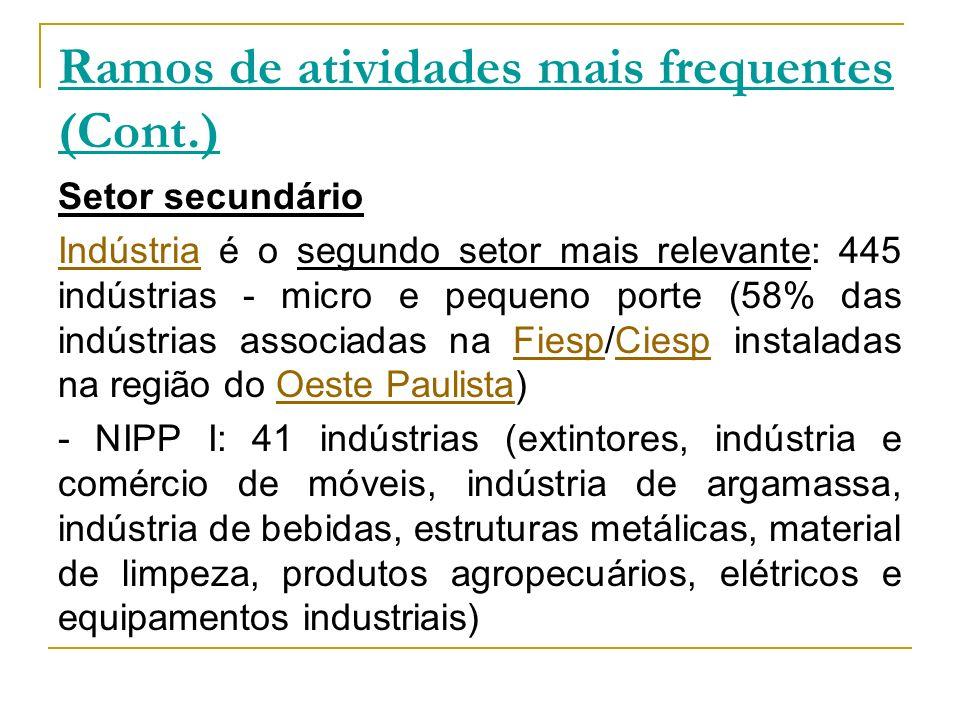 Ramos de atividades mais frequentes (Cont.) Setor secundário IndústriaIndústria é o segundo setor mais relevante: 445 indústrias - micro e pequeno por