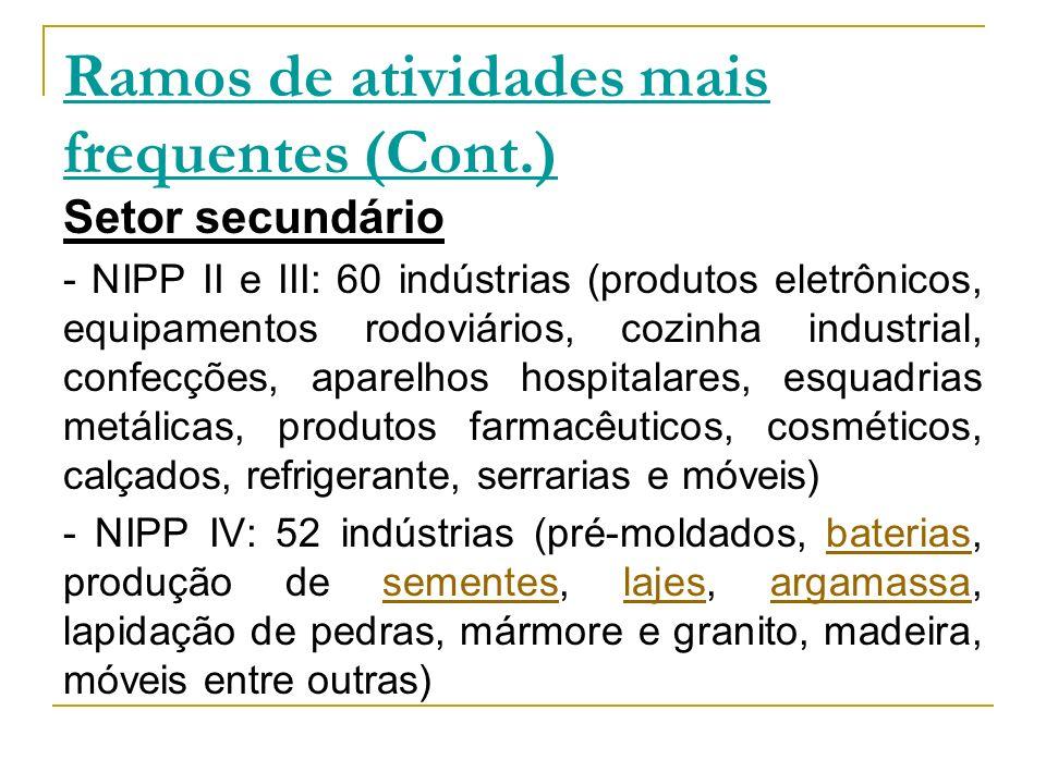 Ramos de atividades mais frequentes (Cont.) Setor secundário - NIPP II e III: 60 indústrias (produtos eletrônicos, equipamentos rodoviários, cozinha i