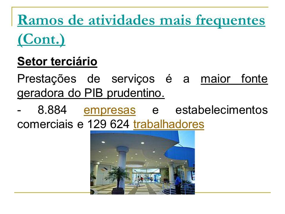 Ramos de atividades mais frequentes (Cont.) Setor terciário Prestações de serviços é a maior fonte geradora do PIB prudentino. - 8.884 empresas e esta