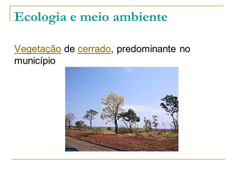 Ecologia e meio ambiente VegetaçãoVegetação de cerrado, predominante no municípiocerrado
