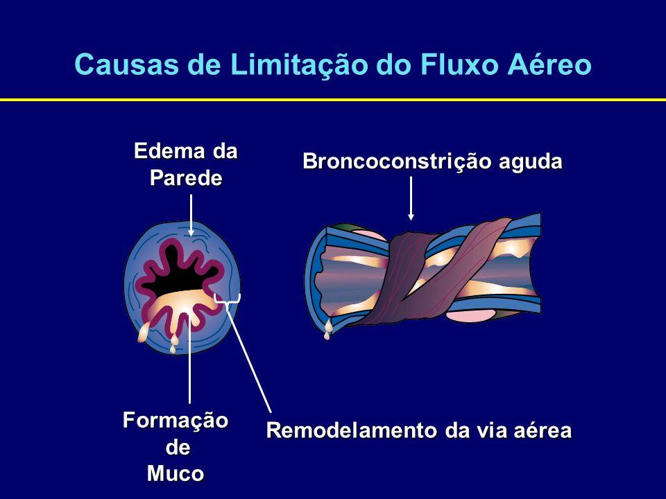 Causas de Limitação do Fluxo Aéreo Broncoconstrição aguda Edema da Parede Formação de deMuco Remodelamento da via aérea