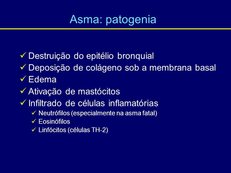 Destruição do epitélio bronquial Deposição de colágeno sob a membrana basal Edema Ativação de mastócitos Infiltrado de células inflamatórias Neutrófil