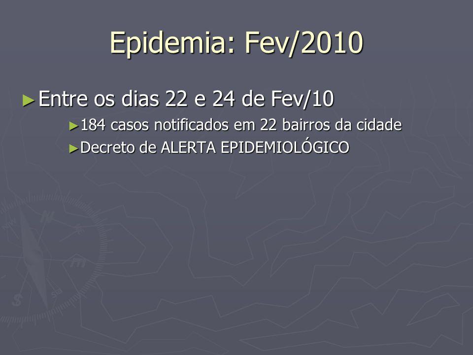 Epidemia: Fev/2010 Entre os dias 22 e 24 de Fev/10 Entre os dias 22 e 24 de Fev/10 184 casos notificados em 22 bairros da cidade 184 casos notificados