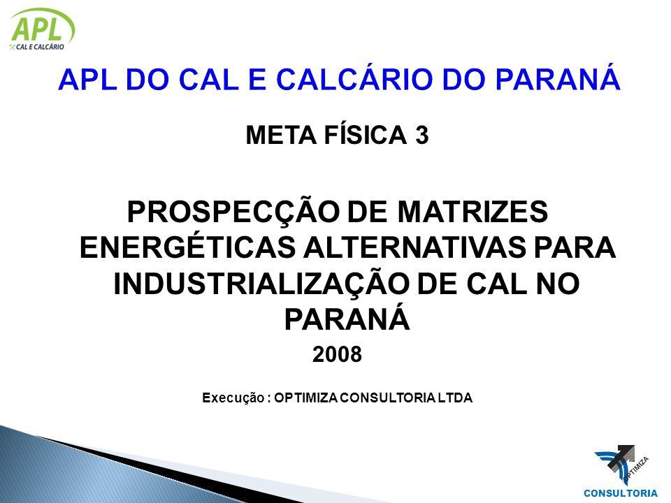 META FÍSICA 3 PROSPECÇÃO DE MATRIZES ENERGÉTICAS ALTERNATIVAS PARA INDUSTRIALIZAÇÃO DE CAL NO PARANÁ 2008 Execução : OPTIMIZA CONSULTORIA LTDA CONSULT