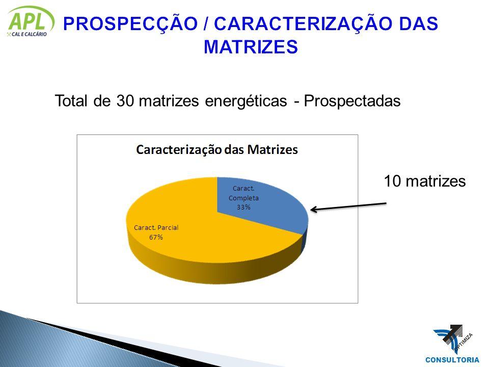 Total de 30 matrizes energéticas - Prospectadas 10 matrizes CONSULTORIA