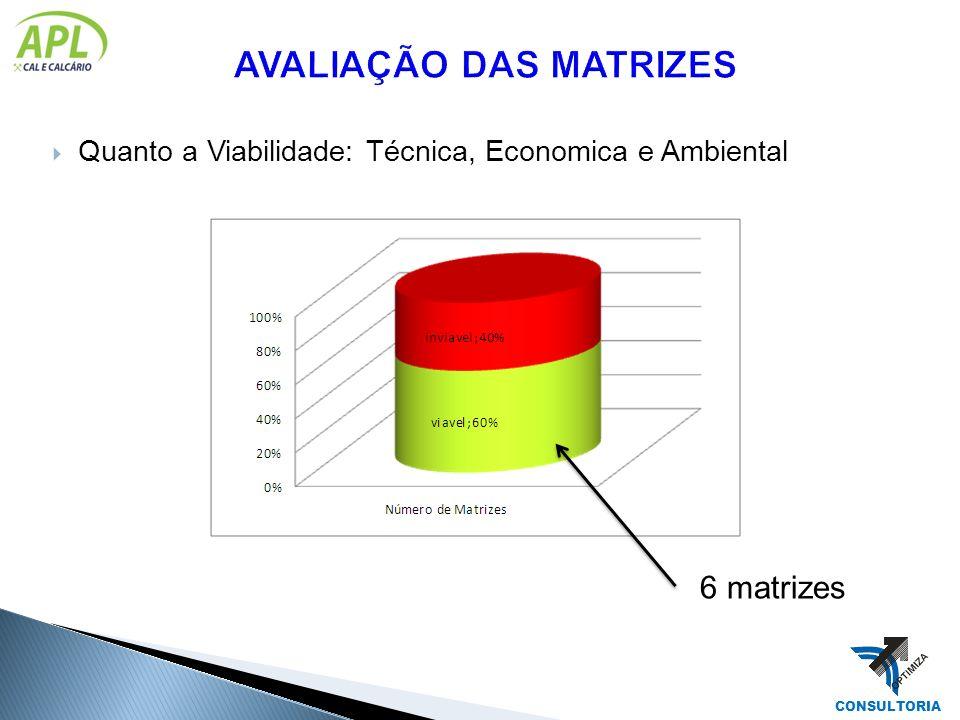 Quanto a Viabilidade: Técnica, Economica e Ambiental 6 matrizes CONSULTORIA