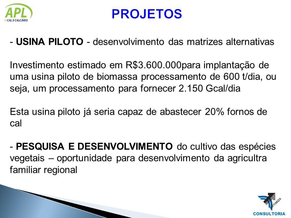 - USINA PILOTO - desenvolvimento das matrizes alternativas Investimento estimado em R$3.600.000para implantação de uma usina piloto de biomassa proces