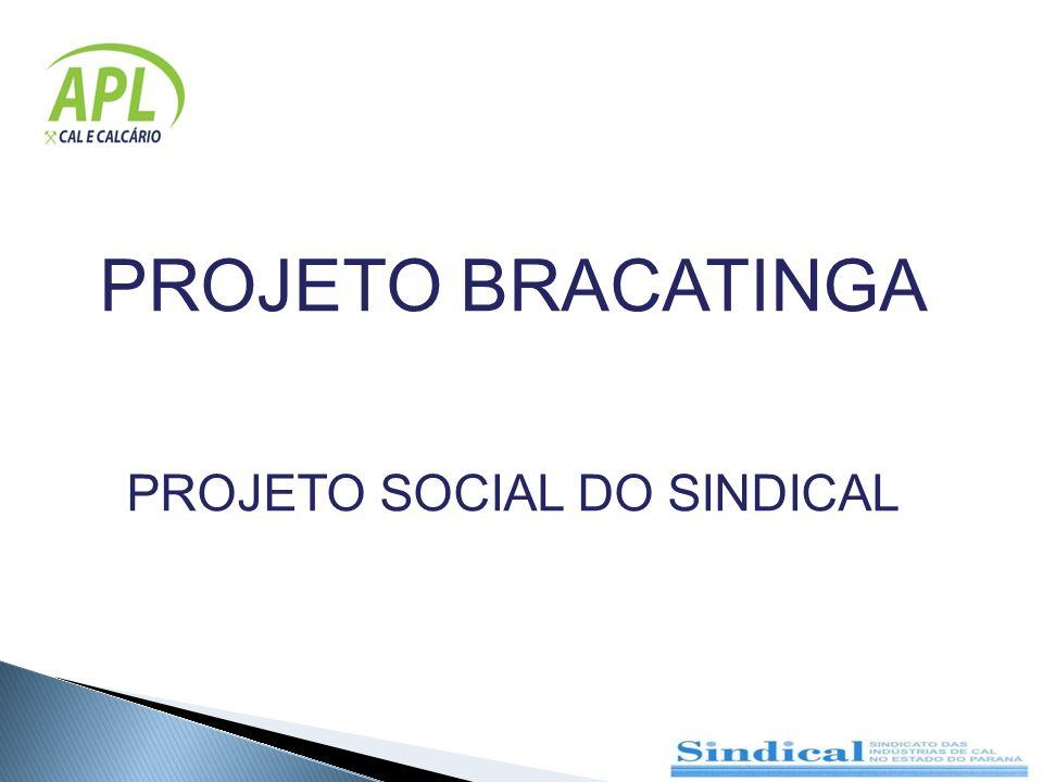 PROJETO BRACATINGA PROJETO SOCIAL DO SINDICAL