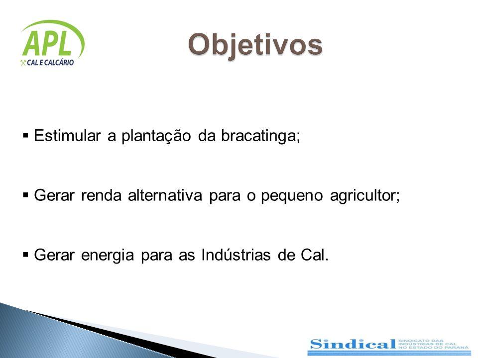 Estimular a plantação da bracatinga; Gerar renda alternativa para o pequeno agricultor; Gerar energia para as Indústrias de Cal.