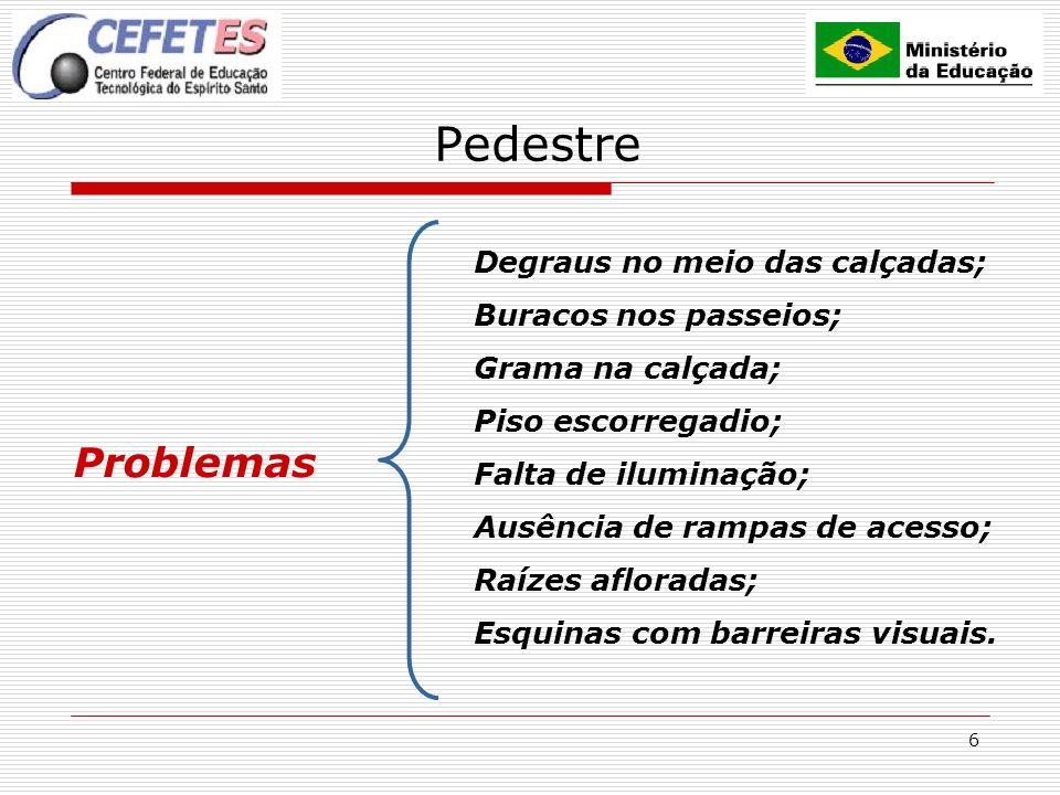 6 Pedestre Problemas Degraus no meio das calçadas; Buracos nos passeios; Grama na calçada; Piso escorregadio; Falta de iluminação; Ausência de rampas