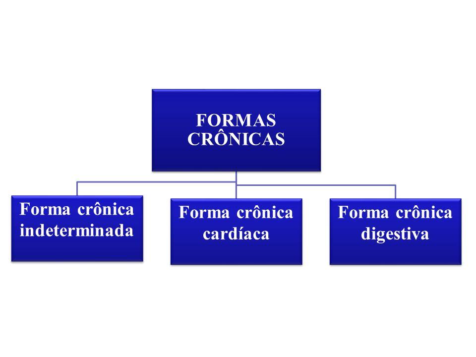 FORMAS CRÔNICAS Forma crônica indeterminada Forma crônica cardíaca Forma crônica digestiva