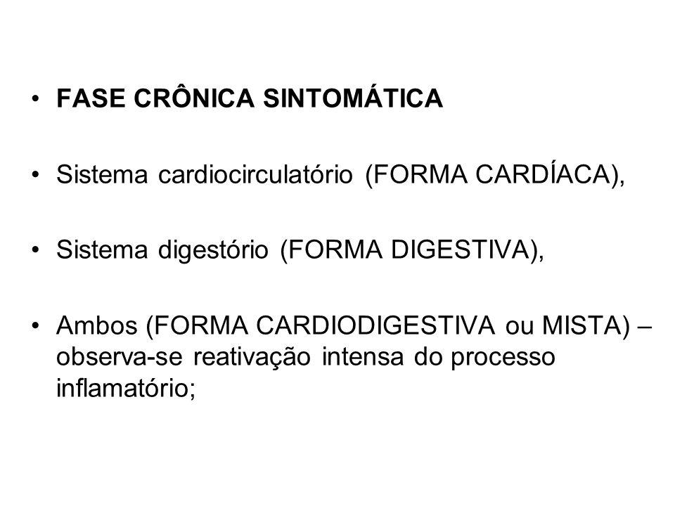 FASE CRÔNICA SINTOMÁTICA Sistema cardiocirculatório (FORMA CARDÍACA), Sistema digestório (FORMA DIGESTIVA), Ambos (FORMA CARDIODIGESTIVA ou MISTA) – o