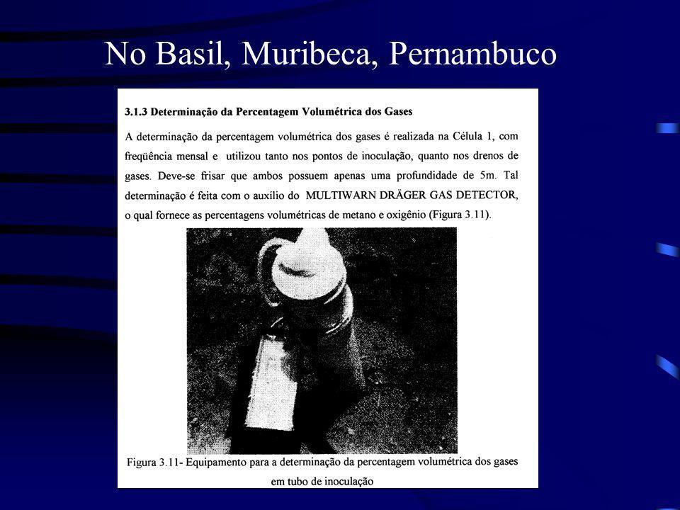 No Basil, Muribeca, Pernambuco