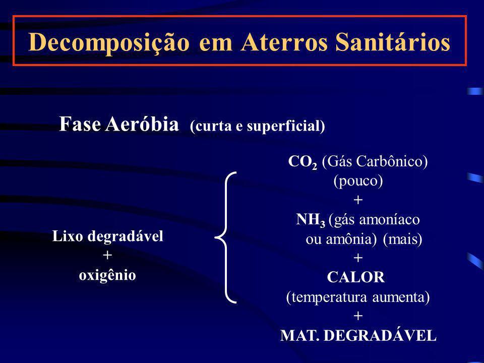 Fase Aeróbia (curta e superficial) Lixo degradável + oxigênio CO 2 (Gás Carbônico) (pouco) + NH 3 (gás amoníaco ou amônia) (mais) + CALOR (temperatura
