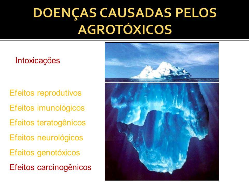 Intoxicações Efeitos reprodutivos Efeitos imunológicos Efeitos teratogênicos Efeitos neurológicos Efeitos genotóxicos Efeitos carcinogênicos