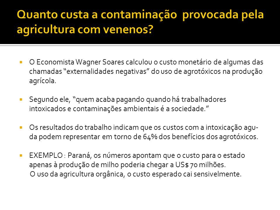 O Economista Wagner Soares calculou o custo monetário de algumas das chamadas externalidades negativas do uso de agrotóxicos na produção agrícola. Seg