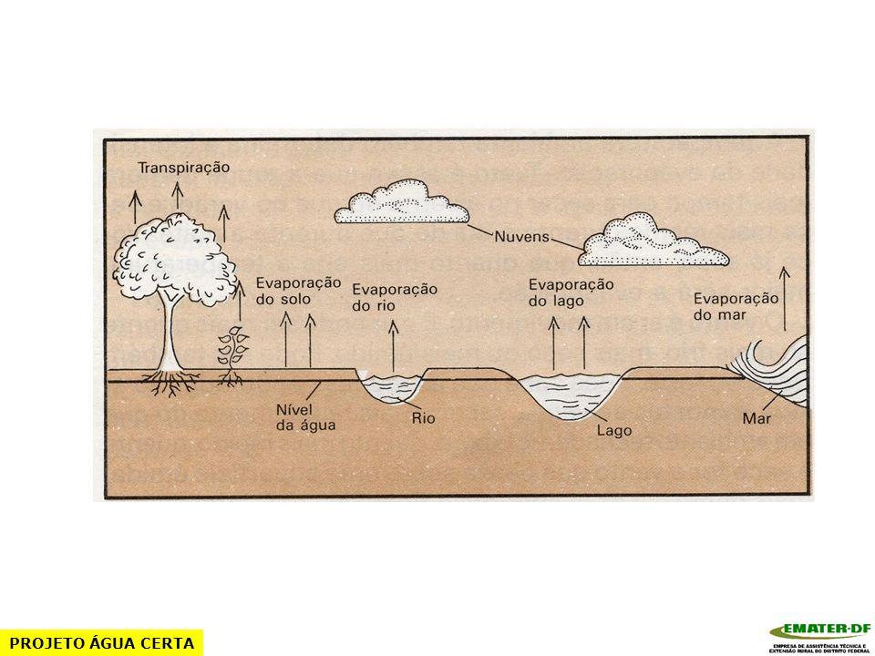 Fatores que afetam a perda de água Sol Temperatura Umidade relativa do ar Ventos Estágio de desenvolvimento da cultura PROJETO ÁGUA CERTA