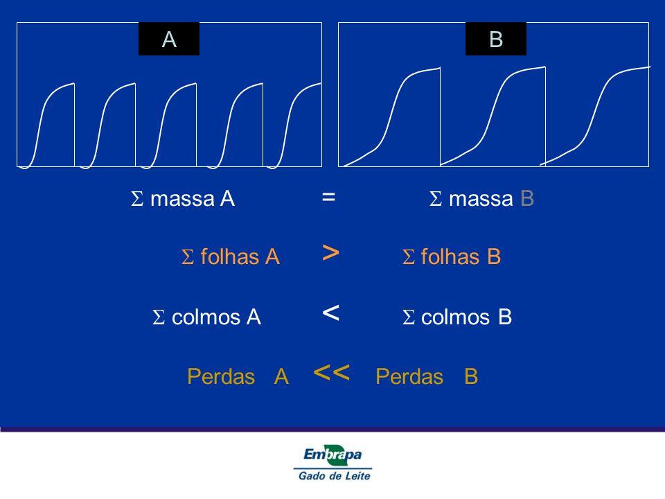 AB massa A = massa B folhas A > folhas B colmos A < colmos B Perdas A << Perdas B