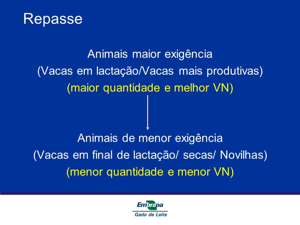 Repasse Animais maior exigência (Vacas em lactação/Vacas mais produtivas) (maior quantidade e melhor VN) Animais de menor exigência (Vacas em final de