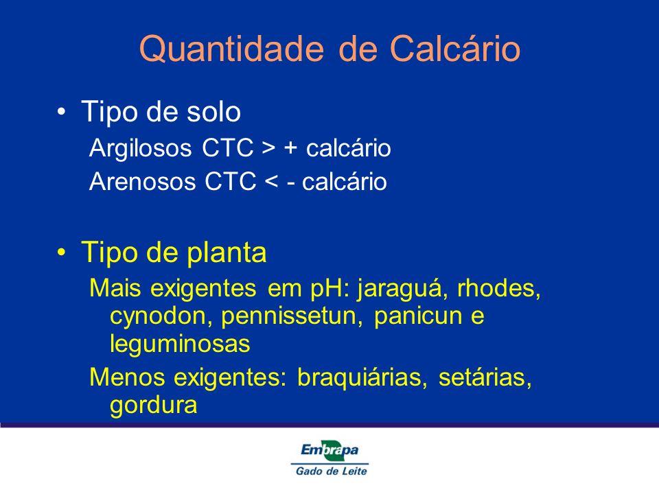 Quantidade de Calcário Tipo de solo Argilosos CTC > + calcário Arenosos CTC < - calcário Tipo de planta Mais exigentes em pH: jaraguá, rhodes, cynodon