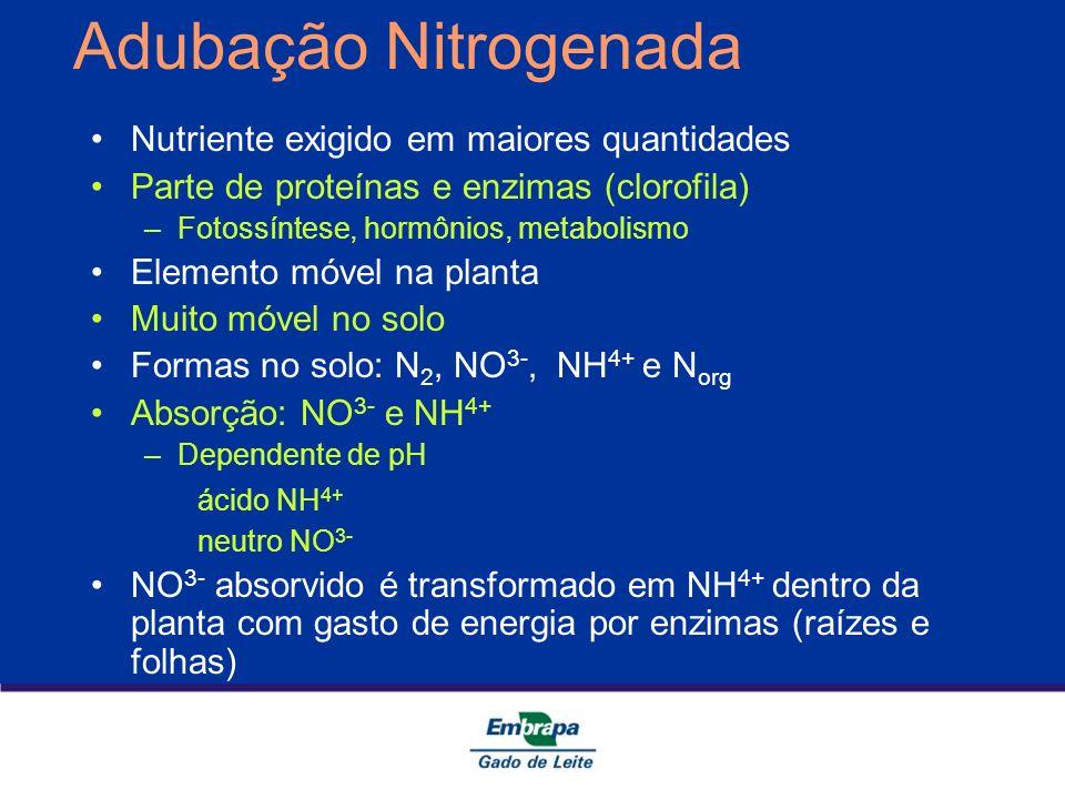 Adubação Nitrogenada Nutriente exigido em maiores quantidades Parte de proteínas e enzimas (clorofila) –Fotossíntese, hormônios, metabolismo Elemento