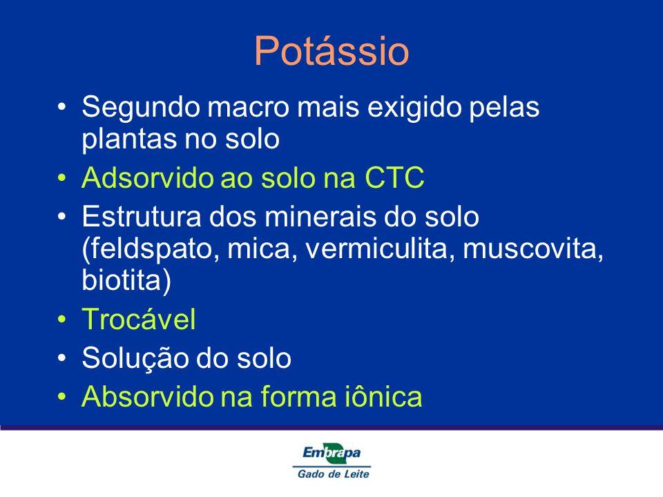 Potássio Segundo macro mais exigido pelas plantas no solo Adsorvido ao solo na CTC Estrutura dos minerais do solo (feldspato, mica, vermiculita, musco