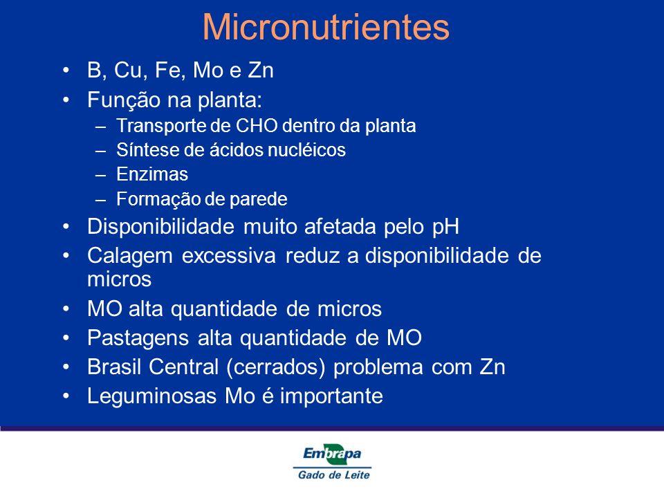 Micronutrientes B, Cu, Fe, Mo e Zn Função na planta: –Transporte de CHO dentro da planta –Síntese de ácidos nucléicos –Enzimas –Formação de parede Dis