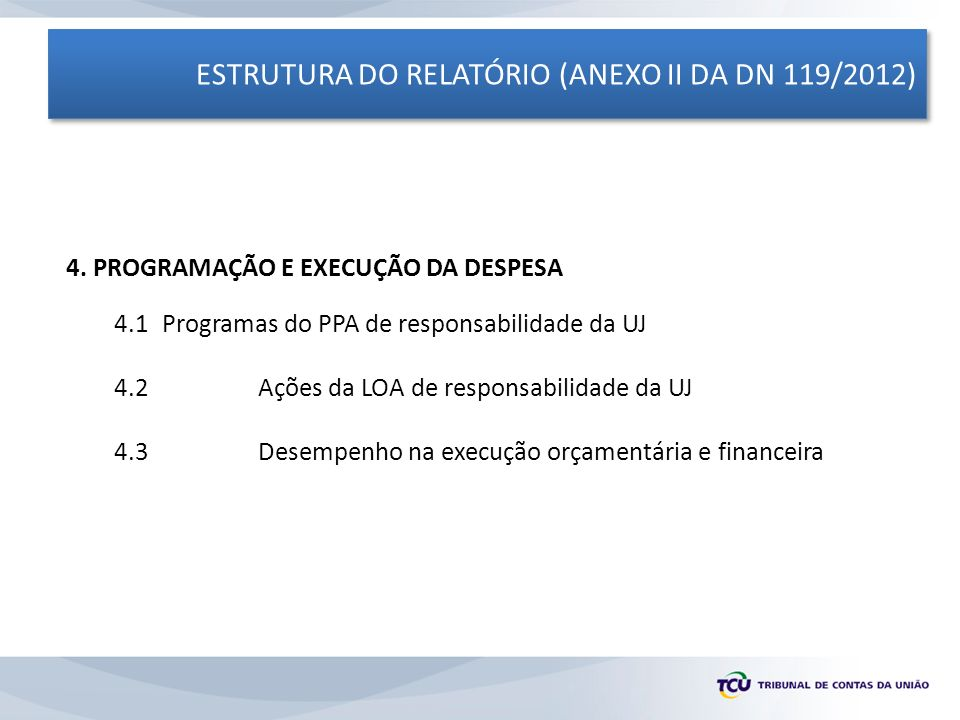 ESTRUTURA DO RELATÓRIO (ANEXO II DA DN 119/2012) 4. PROGRAMAÇÃO E EXECUÇÃO DA DESPESA 4.1 Programas do PPA de responsabilidade da UJ 4.2Ações da LOA d